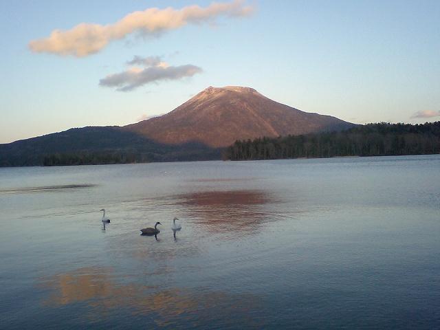 晩秋の阿寒湖 白鳥飛来